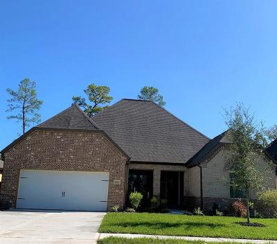 Spring Single Family Home For Sale: 27680 Vivace Drive