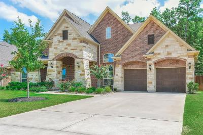 Tomball Single Family Home For Sale: 30826 Raleigh Creek Drive