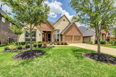 Katy Single Family Home For Sale: 29118 Davenport Drive