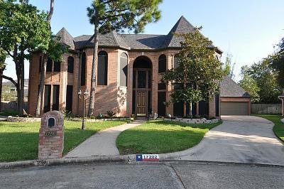 Spring Single Family Home For Sale: 17202 De Chirico Circle