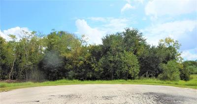League City Farm & Ranch For Sale: Fm 517
