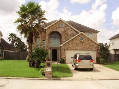 Houston Single Family Home For Sale: 6611 W Nanaksar Drive