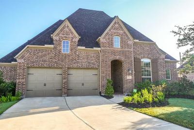 Fort Bend County Single Family Home For Sale: 27910 Castle Park Lane