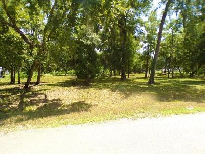 Brazoria Residential Lots & Land For Sale: Lt 42 County Road 945c