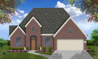 Conroe Single Family Home For Sale: 9918 Papyrus Rush Court