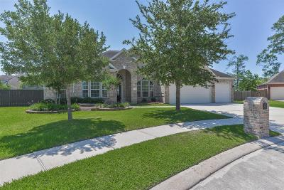 Spring Single Family Home For Sale: 7103 Sandy Isle Lane