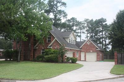 Spring Single Family Home For Sale: 9310 Katie Grace Circle