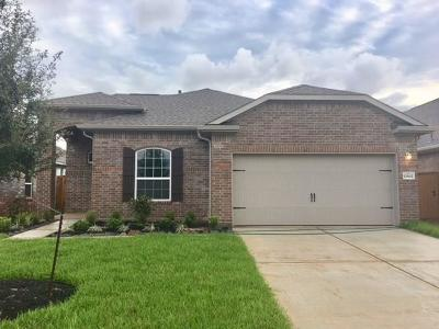 Texas City Single Family Home For Sale: 12602 Jetty Cove