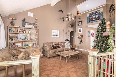 League City Single Family Home For Sale: 2002 Aberdeen Drive