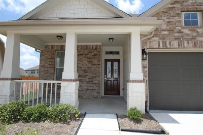 Katy Single Family Home For Sale: 20723 Waterfall Rain Court