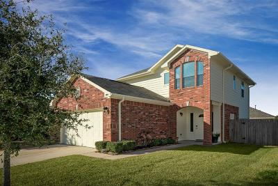 Tomball Single Family Home For Sale: 10814 Elgar Lane
