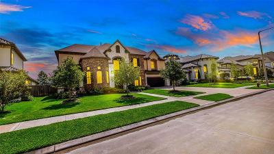 Friendswood Single Family Home For Sale: 2217 Pleasant Hill Drive