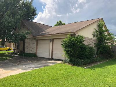 Houston Single Family Home For Sale: 17010 Sky Blue Place