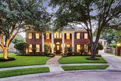 Sugar Land Single Family Home For Sale: 15 Greenlaw Court
