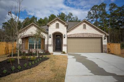 Conroe Single Family Home For Sale: 2967 Twin Cove Court