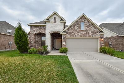 Rosenberg Single Family Home For Sale: 9311 Gilbert Hollow Drive
