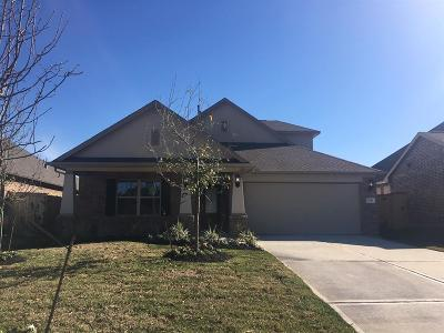Conroe Single Family Home For Sale: 2718 Little Caney Way