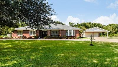 Pearland Single Family Home For Sale: 7713 Longleaf Drive