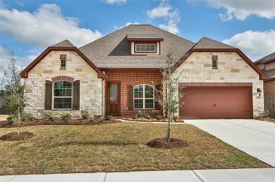 Tomball Single Family Home For Sale: 10407 Silver Shield Way