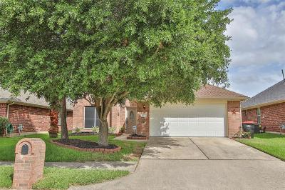 Tomball Single Family Home For Sale: 11915 Lucky Meadow Drive
