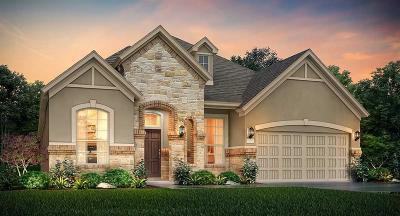 Rosenberg Single Family Home For Sale: 2223 Pickford Terrace Lane