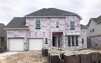 Spring Single Family Home For Sale: 3906 Sierra Cove Lane
