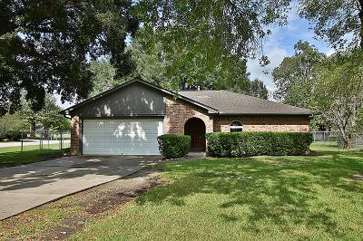 Houston Single Family Home For Sale: 12942 Dakar Drive