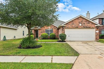Houston Single Family Home For Sale: 1230 Chalk Rock Drive