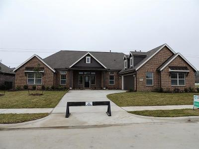 Baytown Single Family Home For Sale: 6915 Vista Ledge Drive