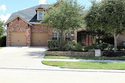 Katy Single Family Home For Sale: 10034 Terrance Springs Lane