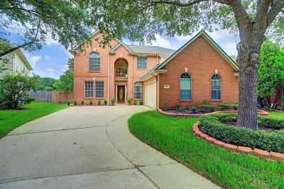 Sugar Land Single Family Home For Sale: 5539 Santa Chase Lane