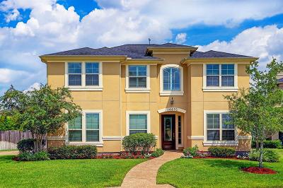 Houston Single Family Home For Sale: 14435 Kingston Cove Lane