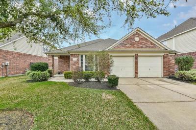Houston Single Family Home For Sale: 12738 Porter Meadow Lane