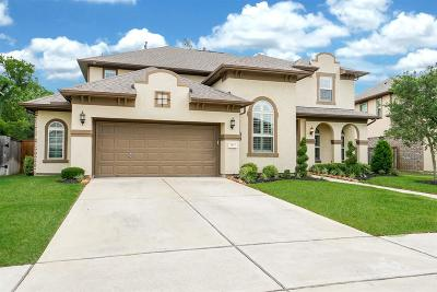 Sugar Land Single Family Home For Sale: 5423 Oban Terrace Lane