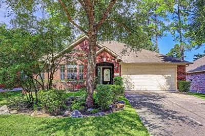 The Woodlands Single Family Home For Sale: 23 N Merryweather Circle