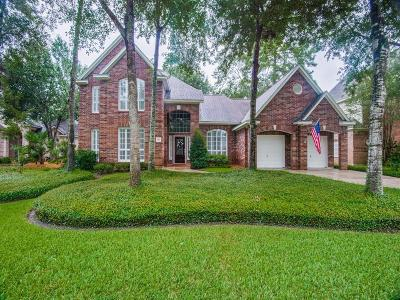 The Woodlands Single Family Home For Sale: 131 W Shadowpoint Circle