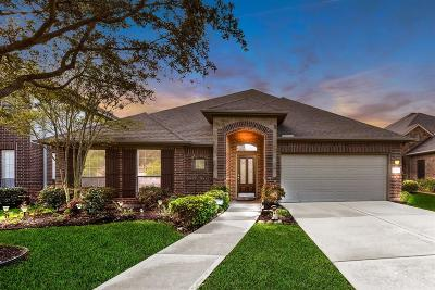 Katy TX Single Family Home For Sale: $264,800