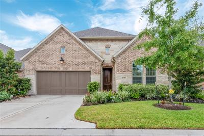 Houston Single Family Home For Sale: 13215 Parkway Meadows Drive