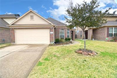 Tomball Single Family Home For Sale: 19251 Carriage Vale Lane