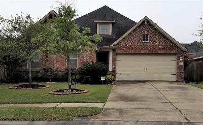 Katy Single Family Home For Sale: 28019 Canyon Wren Drive