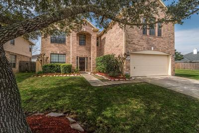 Friendswood Single Family Home For Sale: 3835 Beacons View