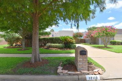 Houston Single Family Home For Sale: 12110 Olympia Drive