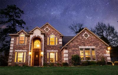 Willis Single Family Home For Sale: 12131 Sagittarius Drive E