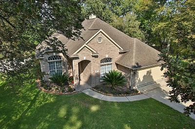 Montgomery Single Family Home For Sale: 193 Park Way