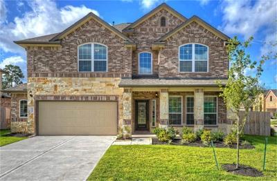 Porter Single Family Home For Sale: 21319 Avett