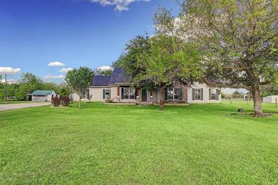 Alvin Single Family Home For Sale: 4115 Singletary Road