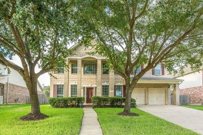 Sugar Land Single Family Home For Sale: 14002 Blue Vista Drive