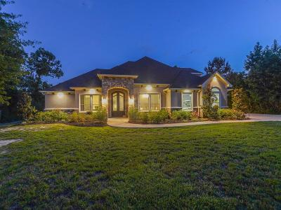 Montgomery Single Family Home For Sale: 26169 Enzos Way