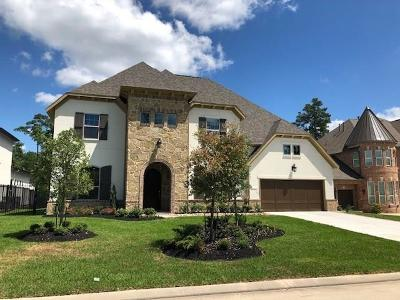 The Woodlands Single Family Home For Sale: 79 North Curly Willow Circle