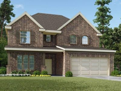 Pearland Single Family Home For Sale: 6028 Pearland Place